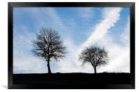 Two Trees, Framed Print
