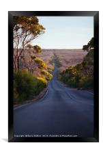 The road, Framed Print