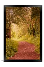 Autumn Fall Pathway, Framed Print