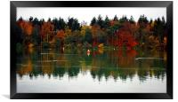 AUTUMN TREES REFLECTIONS, Framed Print