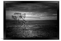 The Test Of Time, Black and White, Framed Print