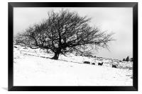 Tree in Snow with Deer, Framed Print