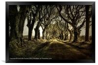 Mysterious Dark Hedges, Framed Print