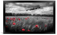 Lest we forget, Framed Print