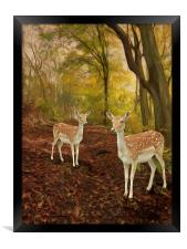 Two Little Deer's, Framed Print