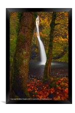 Surrounded by the Season, Framed Print