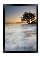 Enveloped by the Sea , Framed Print