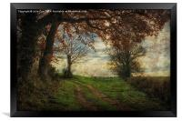 Norfolk Walks 4, Framed Print