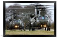 Two Chinooks, Framed Print