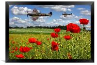 Spitfires and Poppy field, Framed Print