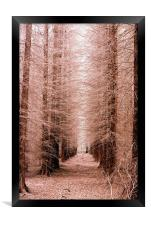 The Tree Cathedral, Framed Print