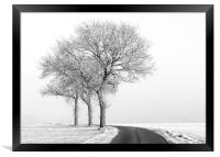 Three Trees, Framed Print