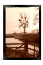 By The Riverbank, Framed Print