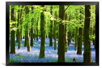 Blue and Green, Framed Print
