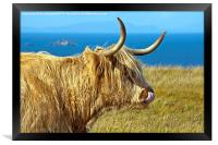 Highland Beauty Highland Cow, Framed Print