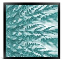 frosted fern, Framed Print