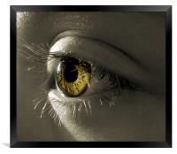 the eye of a child (hazel and green), Framed Print