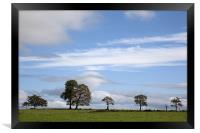 Tree Line Horizon, Framed Print