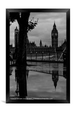 Westminster Puddle, black and white, Framed Print