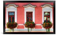 It's a Rosy View, Framed Print