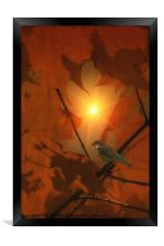 SPARROW IN THE LEAVES, Framed Print