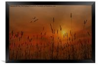 SUNSET IN THE VALLEY, Framed Print