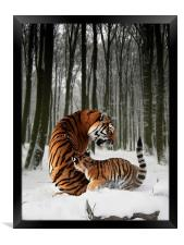 A Winter Tale, Framed Print