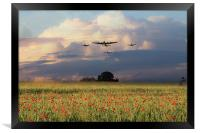Remembrance Day , Framed Print