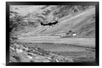 Spitfire In The Weeds - Mono , Framed Print