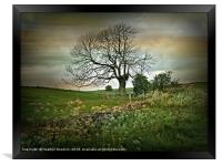 Country Roads, Framed Print