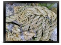 Any Old Rope, Framed Print