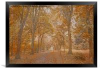 Autumn in the Woods, Framed Print