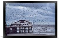 North Pier Starlings, Framed Print