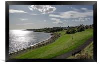 Roome Bay Crail, Framed Print