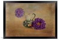 Purple asters with textured finish , Framed Print