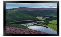 The heather of the Upper Derwent Valley, Framed Print