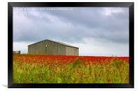 Red Poppies and a Barn, Framed Print