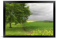 Rapeseed Oil Field Storm Yellow, Framed Print