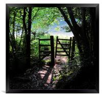Footpath gateway Dartmoor, Framed Print