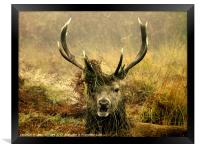 One More for the Road, Framed Print