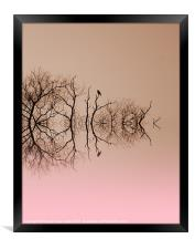 Branches and Birds, Framed Print