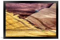Abstract Fields, Framed Print