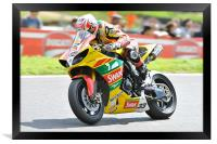 Tommy Hill at Cadwell Park 2011, Framed Print