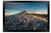 Frosted Grass in the Beacons, Framed Print