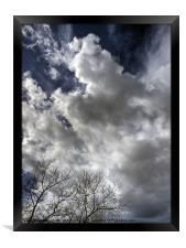 Clouds and Tree, Framed Print