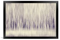 Forest Trees Abstract in Blue Ginger, Framed Print