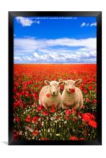 twins in the poppies, Framed Print
