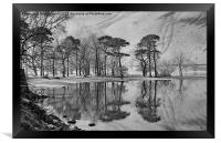 THE BUTTERMERE PINES, Framed Print