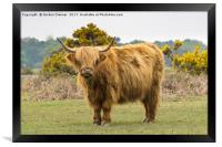 Who are you? Moo, Framed Print