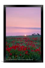 Sunrise over a sea of Red, Framed Print